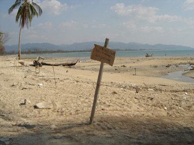 What is left after the tsunami